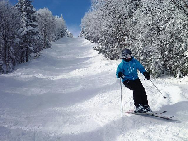 alpské lyžování.jpg