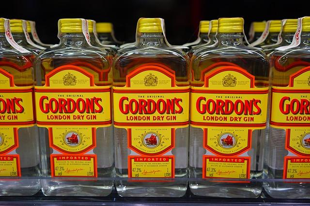 gin vůči slivovici